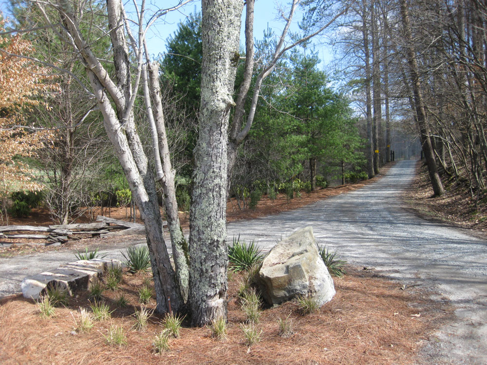 Residential Landscaping Upland : Forest garden northway landscaping